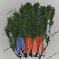 garden_00011-3d-max-model