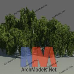 garden_00013-3d-max-model