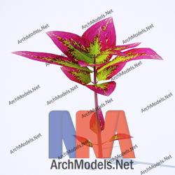garden_00033-3d-max-model