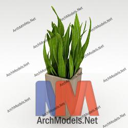 home-plant_00005-3d-max-model