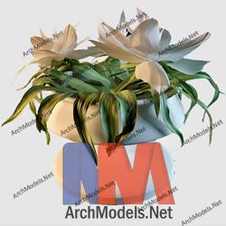 home-plant_00011-3d-max-model